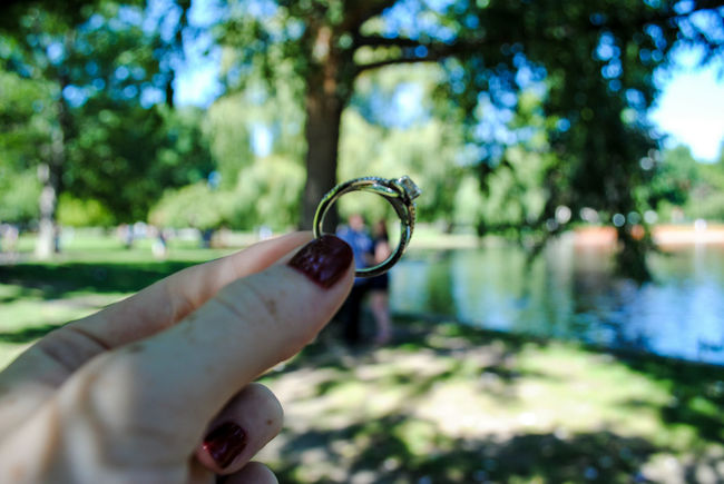 Original Experiences Engagement Ring Engagement Photography Wedding Romance Classic Holding Rings Cliche Shot Diamond Greenery Nature Botanical Gardens People And Places