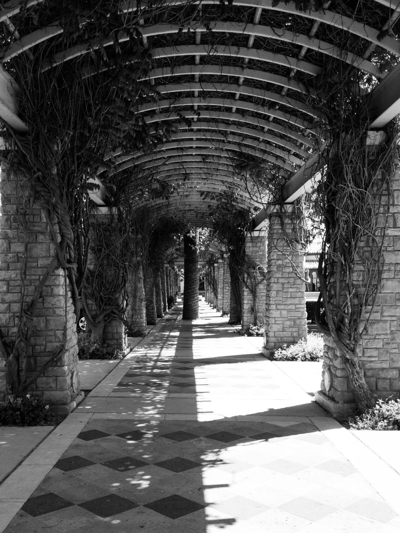 The Way Forward Day Indoors  Built Structure Architecture No People Black And White Monochrome