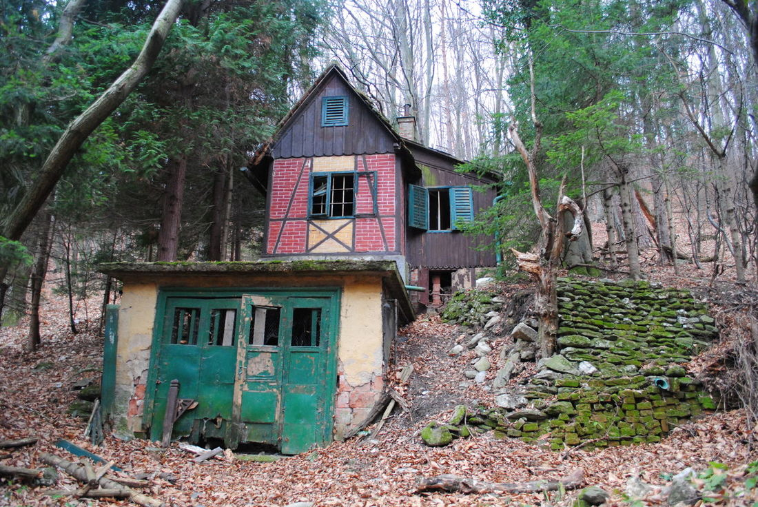 Architecture Forest Forest Photography House In The Forest Lost Building Lost Places Old Buildings Old House Outdoors