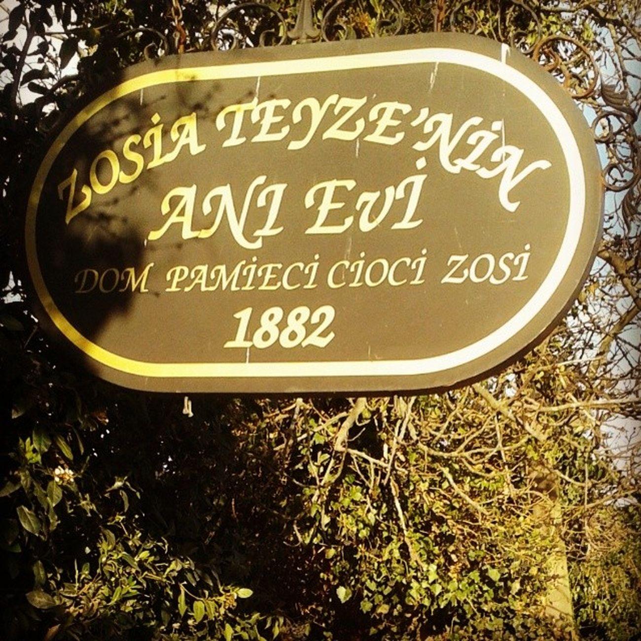 Adampol Polonezkoy Stambul Turcja