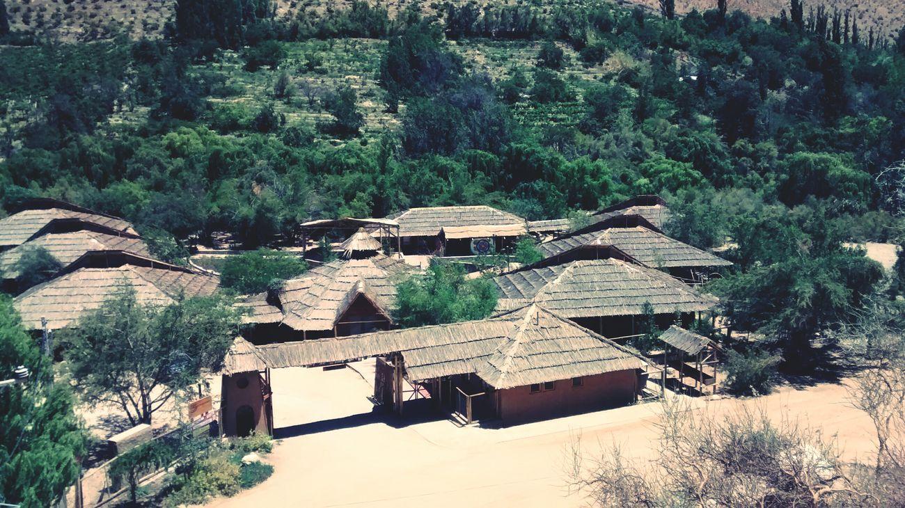 Freedom Traveling Naturelovers Nature Valle Del Elqui