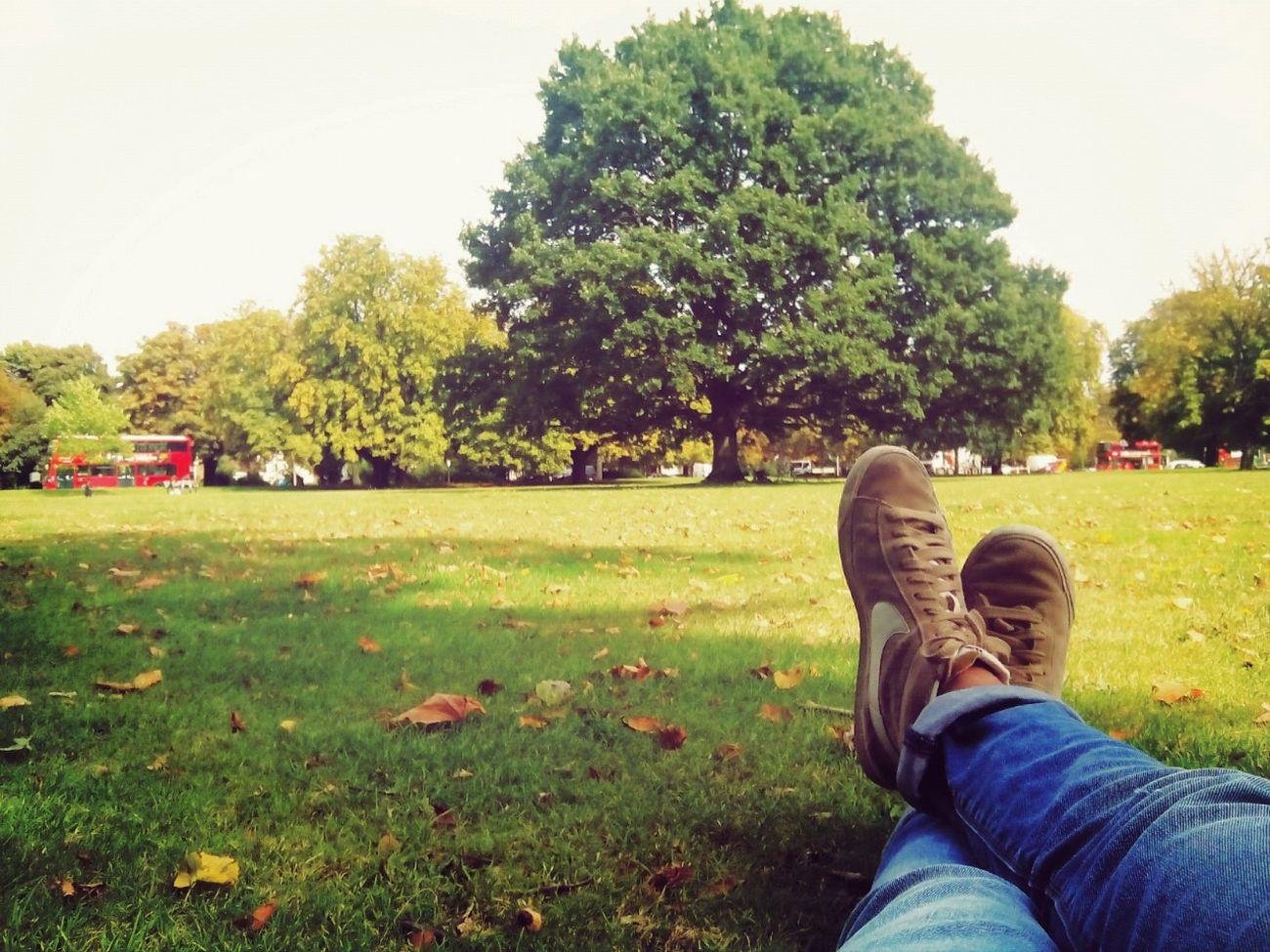 Che benessereeee, altro che Cannobio (e dintorni)! Lunch Break At The Park Feel Free Sunny London