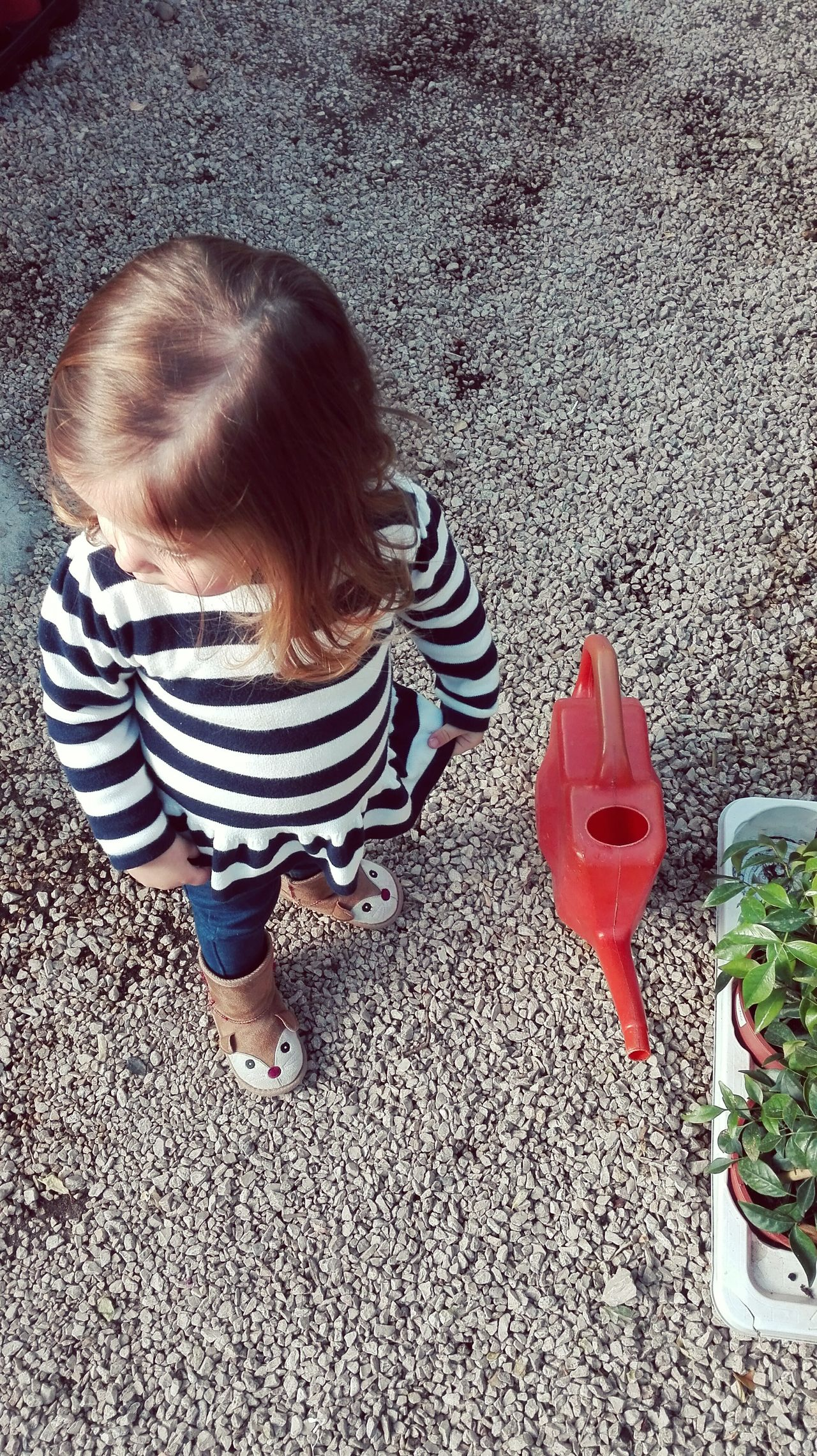Child High Angle View One Person Girls People Childhood Real People Day Outdoors Human Body Part Plants Gardening Watering Can