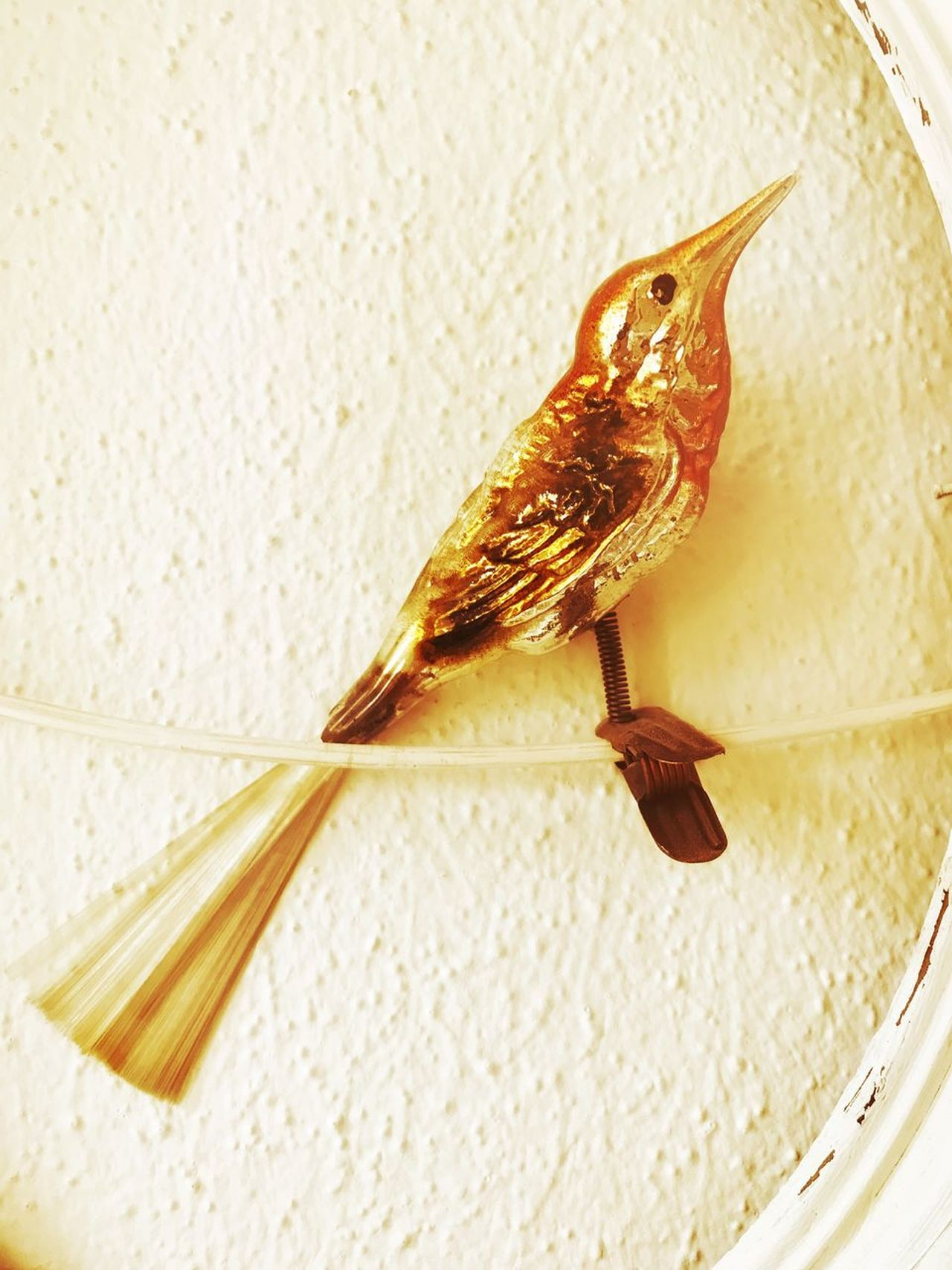 One Animal Animal Themes No People Bird Vintage Old Christmas Ornaments Made Of Glass Old Times Granny Indoors itional] indoorsSparrowwClose-uppPerchinggFooddDayyNaturee