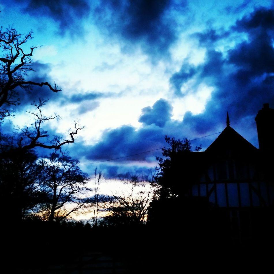 Skyline Skyporn Dramatic Sky Blue Sky Evening Sky Silhouette Eerie Trees Love_blue Noght Time Blue Wave