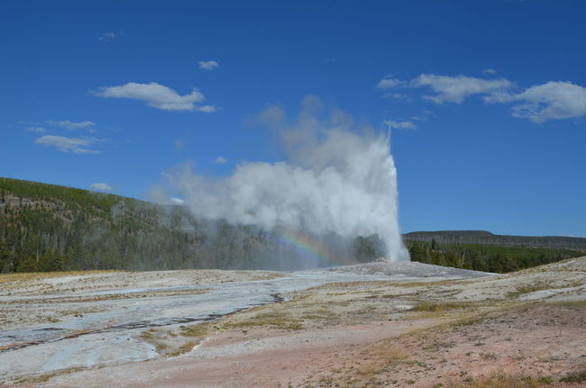 Geysir Landscape Nature Old Faithful Power In Nature