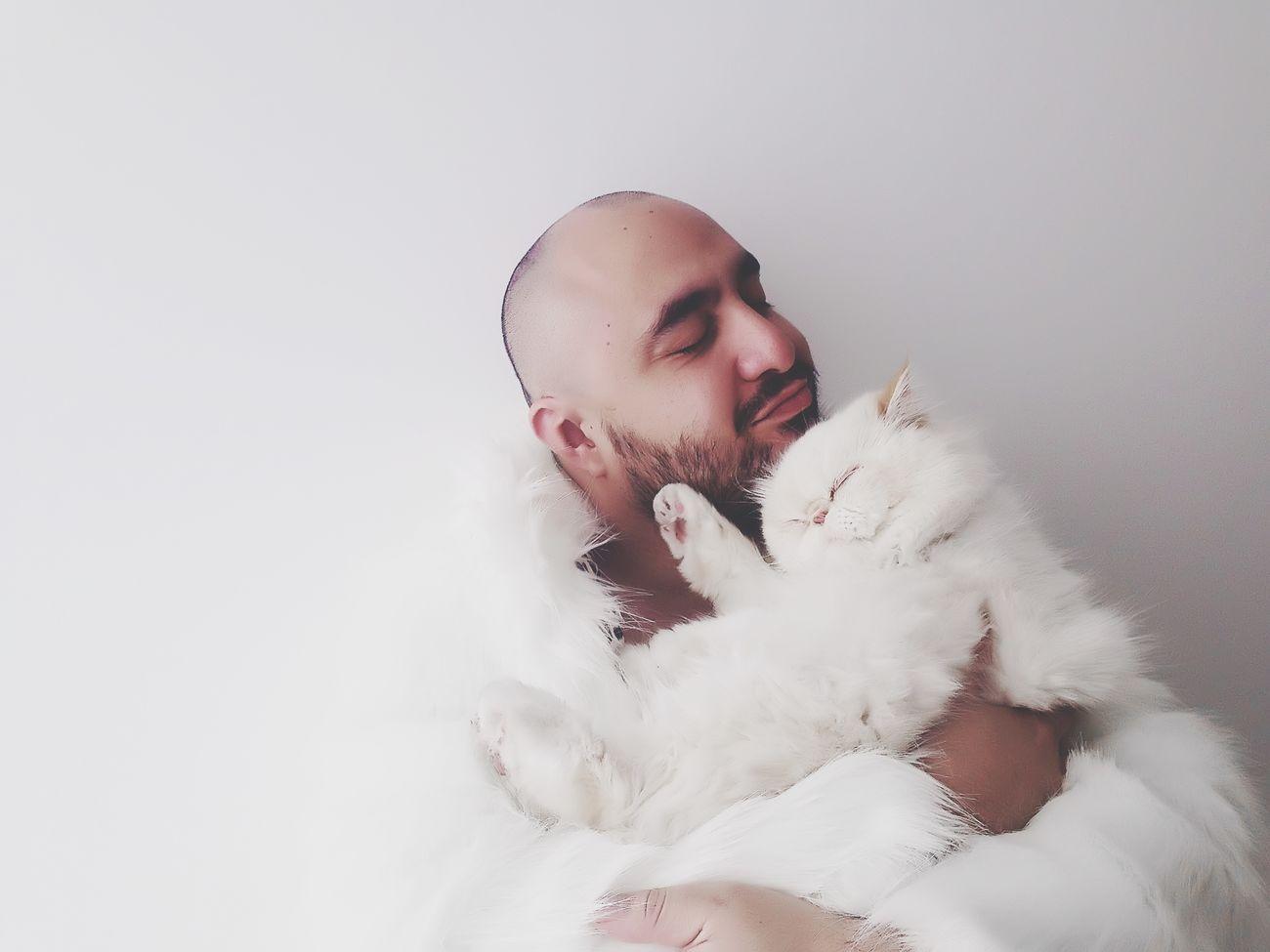 Pussycat White Love Cute Cat Hug