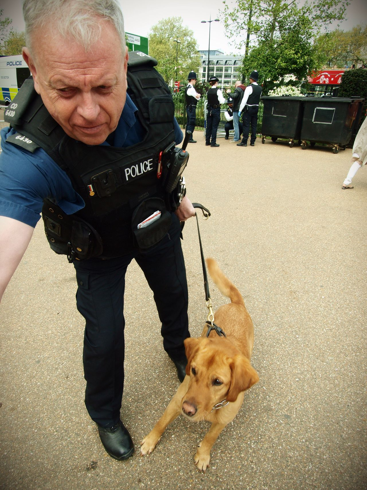 PC a Nightingale and Millie the drug sniffer dog conducting searches at the London 420 Rally to legalise Canabis 20-04-2017 Hyde Park Policing Olympus Stevesevilempire Drug Sniffer Dogs Photojournalism 420 Rally London Lifestyle Canabisculture Metropolitan Police Canabis Canabbis London News Zuiko Steve Merrick London Dog