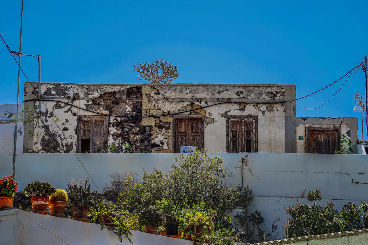 architecture, building exterior, built structure, damaged, tree, house, plant, abandoned, day, outdoors, no people, blue, growth, sky, clear sky