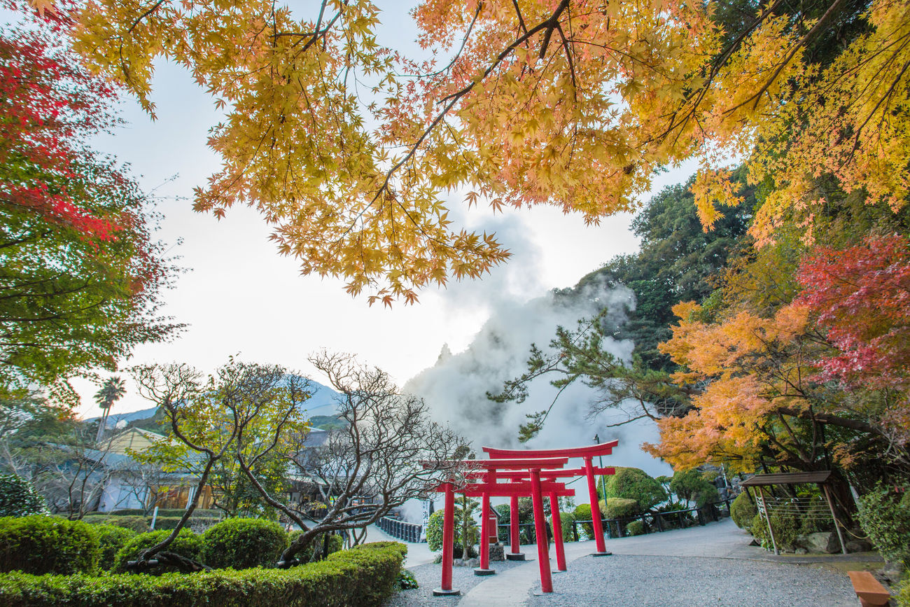Beppu, Japanese Hot Spring Autumn Bath Branch Branches Day Garden Hotspring Japan Japan Photography Japanese  Japanese Garden KYUSHU Landscape Leaf Maple Nature Nature No People Onsen Outdoors Red Sky Steam Travel Tree
