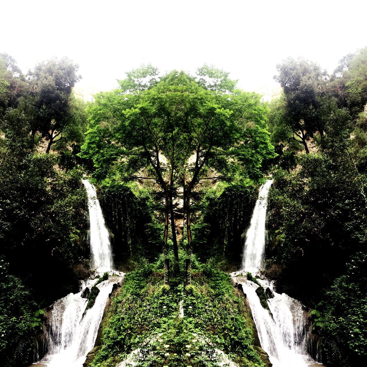 Waterfall Motion Tree Scenics Nature Beauty In Nature Water Long Exposure Forest No People Blurred Motion Outdoors Day Power In Nature Sky The Great Outdoors - 2017 EyeEm Awards