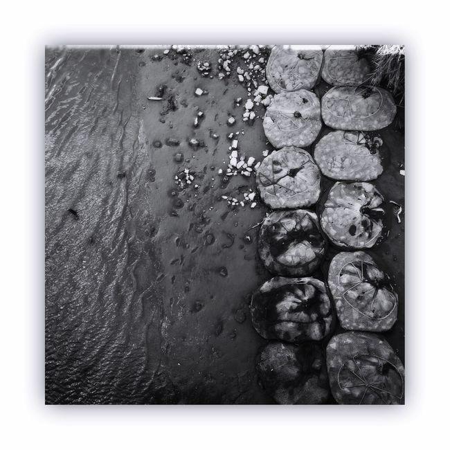 「川を橋の上から撮る」 I Took The Rivers From On The Bridge River Bridge Monochrome Monochrome_life Blackandwhite Light And Shadow The Week Of Eyeem
