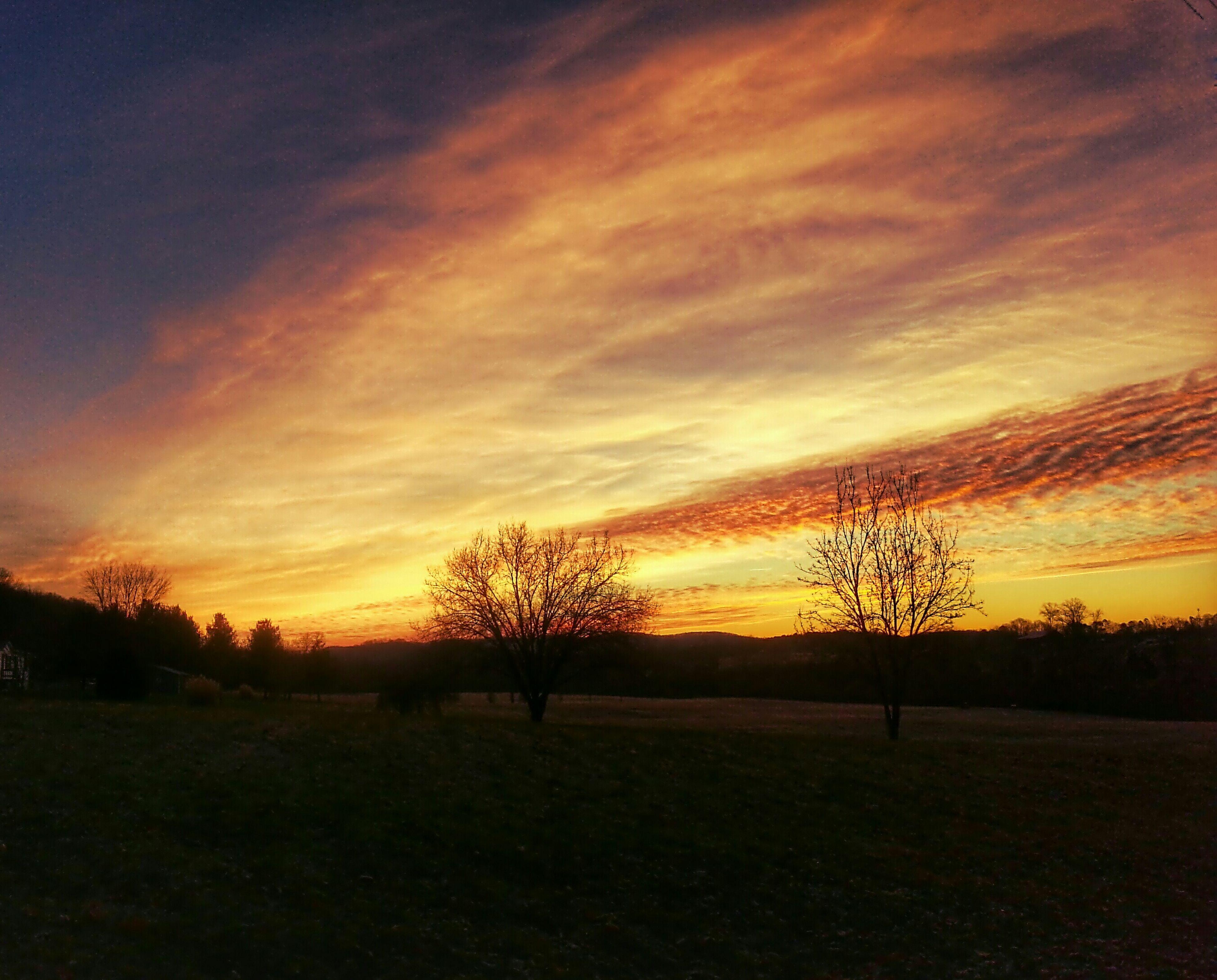 sunset, sky, tranquil scene, tranquility, landscape, silhouette, scenics, tree, bare tree, beauty in nature, field, orange color, nature, cloud - sky, idyllic, cloud, non-urban scene, dramatic sky, outdoors, remote