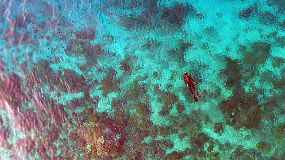 Aerial Shot Aerial View Close-up Day Drone  Nature Outdoors Snorkeling Water Backgrounds A Bird's Eye View Fresh on Market 2016 Flying High Islands