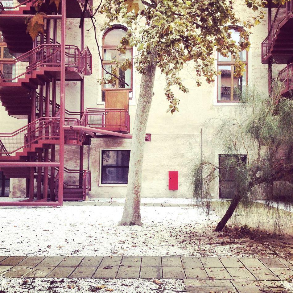 Venice Iuav Architecture