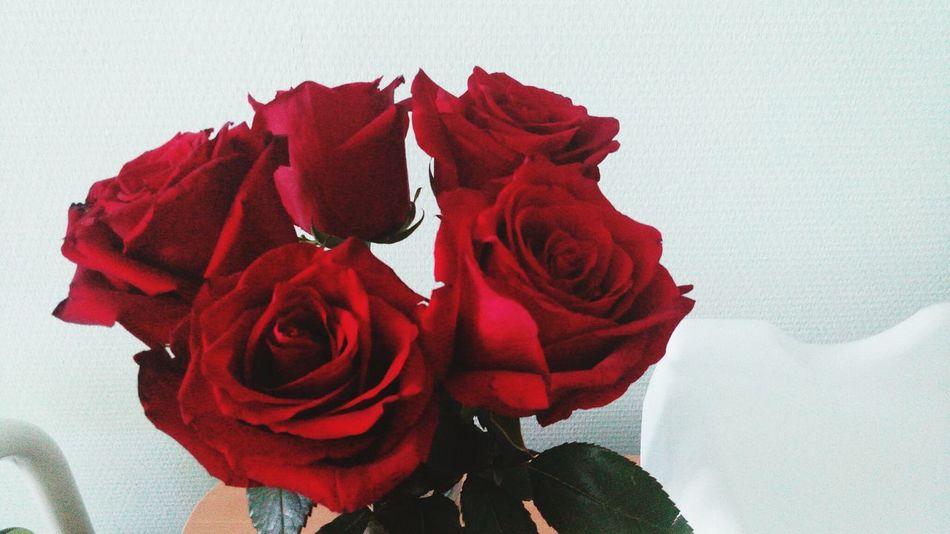 Розы в роддоме) как приятно! Rose♥ Red Roses I Love My Husband<3 люблю мужа роддом материнство в благости благостная мама я мама Motherdaughter