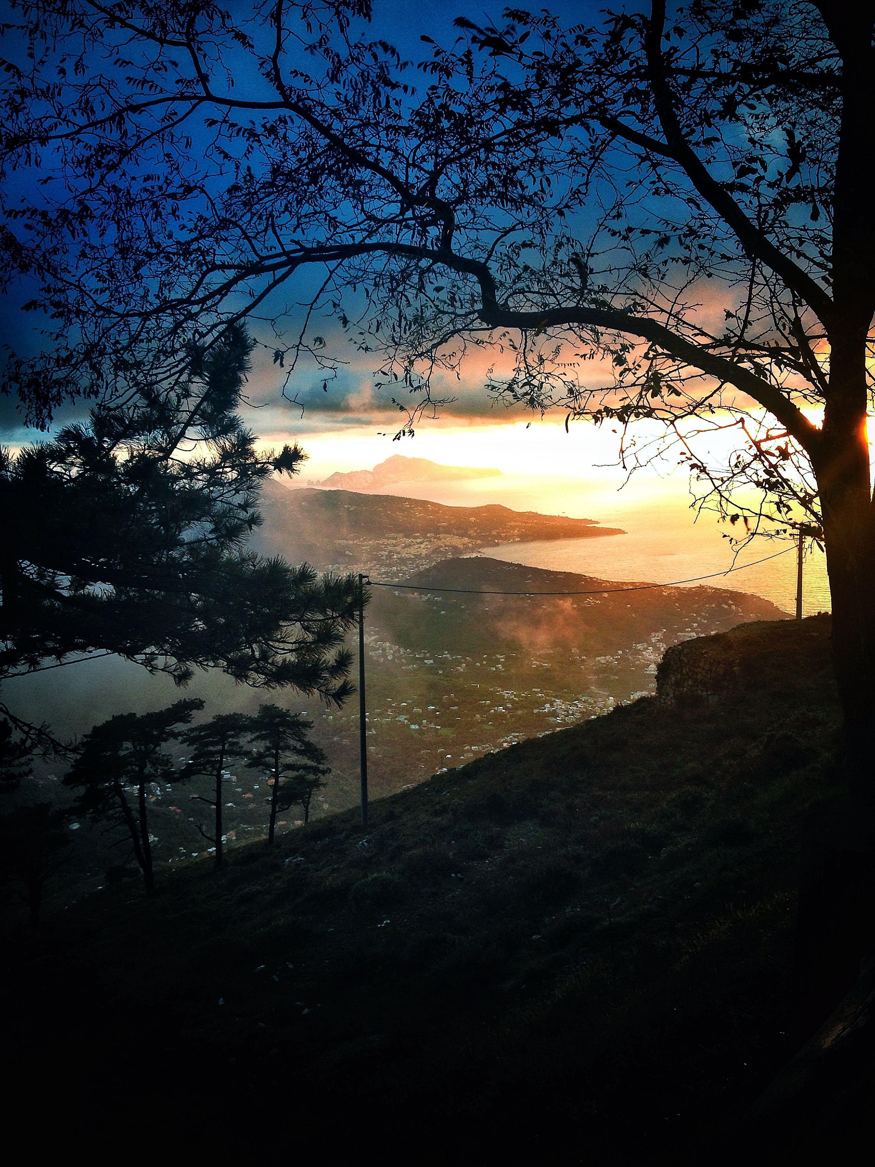 silhouette, sunset, tree, tranquility, tranquil scene, scenics, sun, branch, beauty in nature, sky, bare tree, nature, water, idyllic, sunlight, landscape, non-urban scene, outdoors, sea, dusk