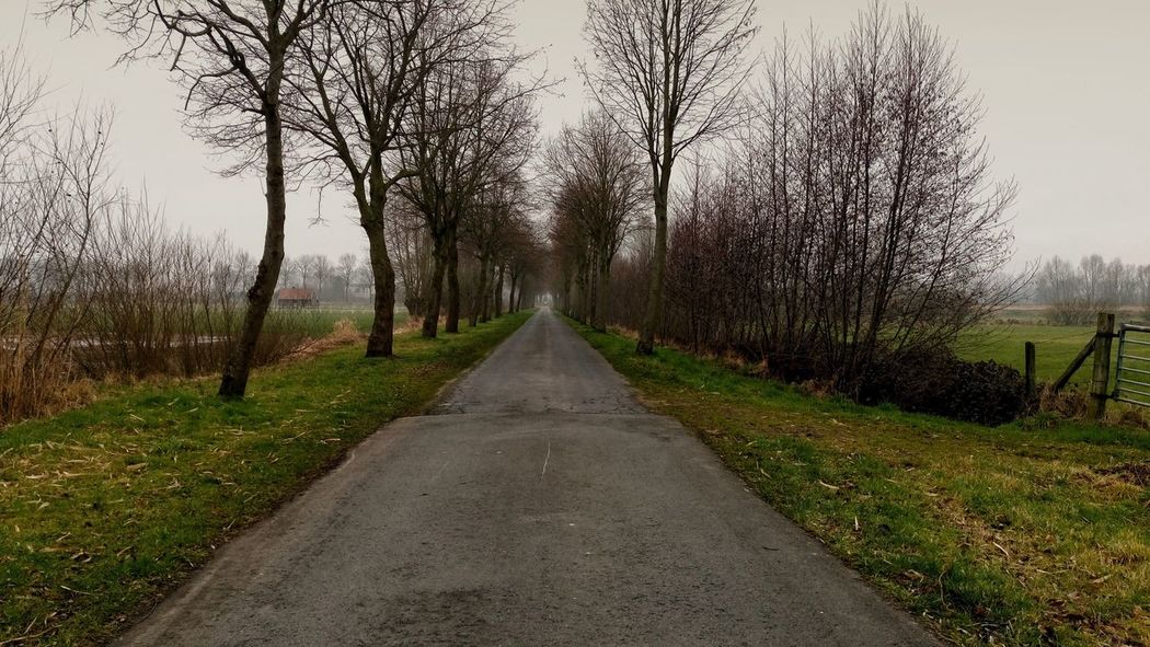 Nature, Nature The Way Forward Grass Road Outdoors Landscape Taking Photos Sony Xperia M5 Photo♡ Beauty In Nature