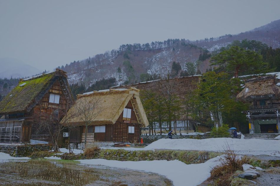 Architecture Built Structure Building Exterior Snow House Winter Mountain Cold Temperature Residential Building Residential Structure Season  Clear Sky Nature Mountain Range Sky Tranquility Outdoors Day Tranquil Scene Rural Scene Japan Sirakawagou