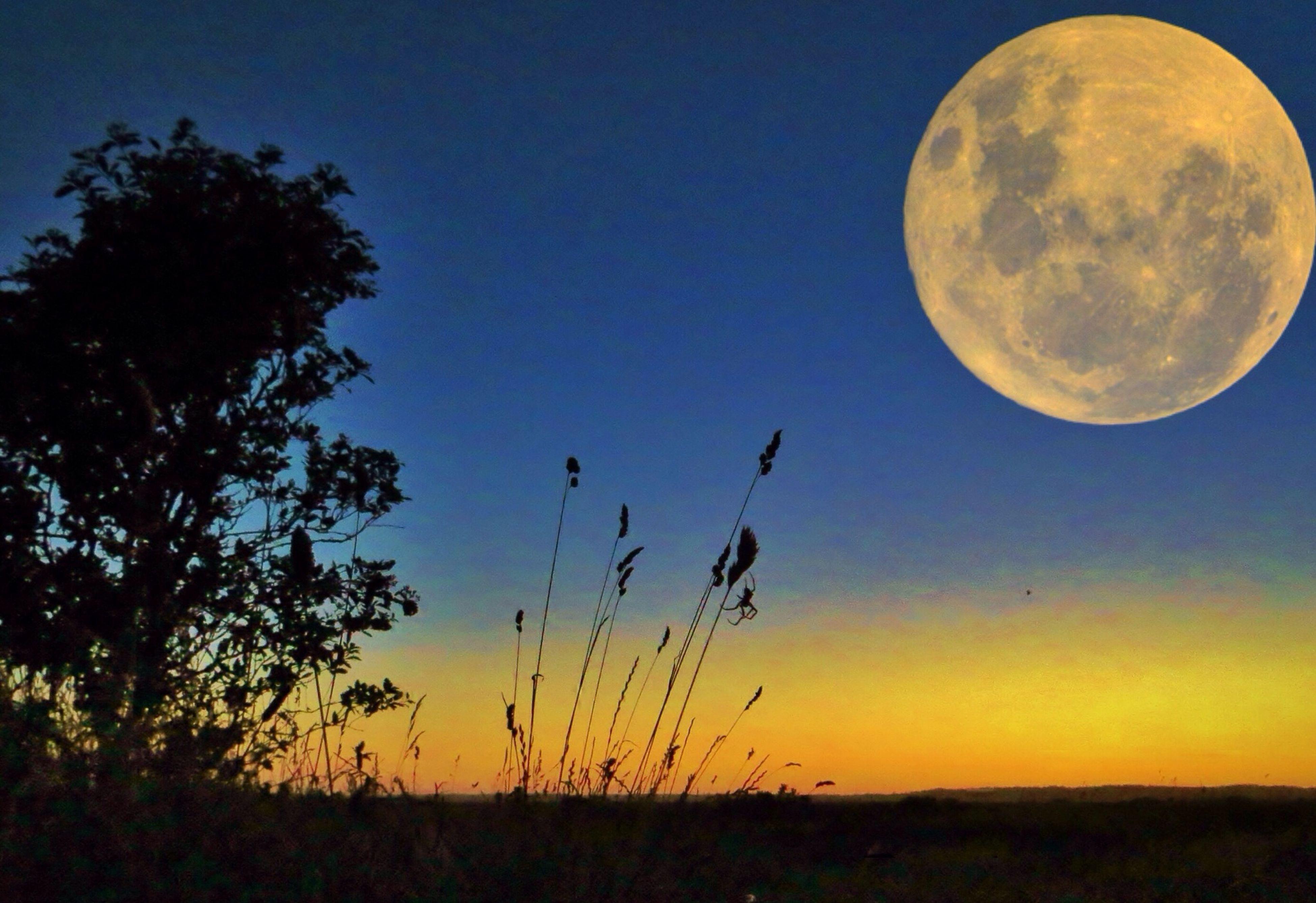 Goodnight my friends. Denmark Tadaa Community Eyem Best Shots Sunset.