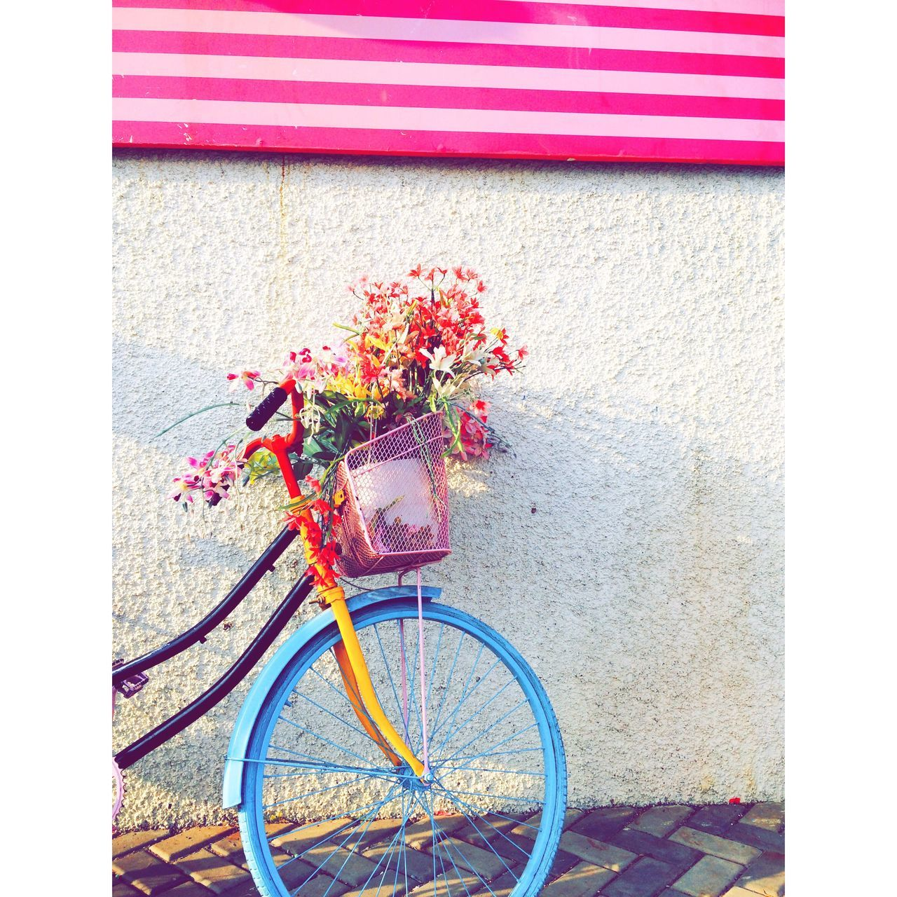 flower, bicycle, outdoors, day, transportation, built structure, no people, mode of transport, building exterior, architecture, land vehicle, red, multi colored, freshness, fragility, nature, close-up
