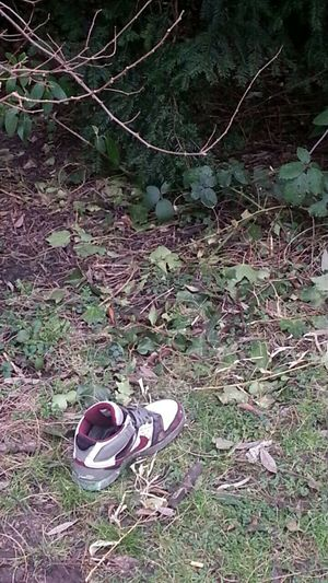 Lost shoe. Do you ever wonder what their story is? Dystopian Nyarnon Landscape Negative Space Streetphotography Nature
