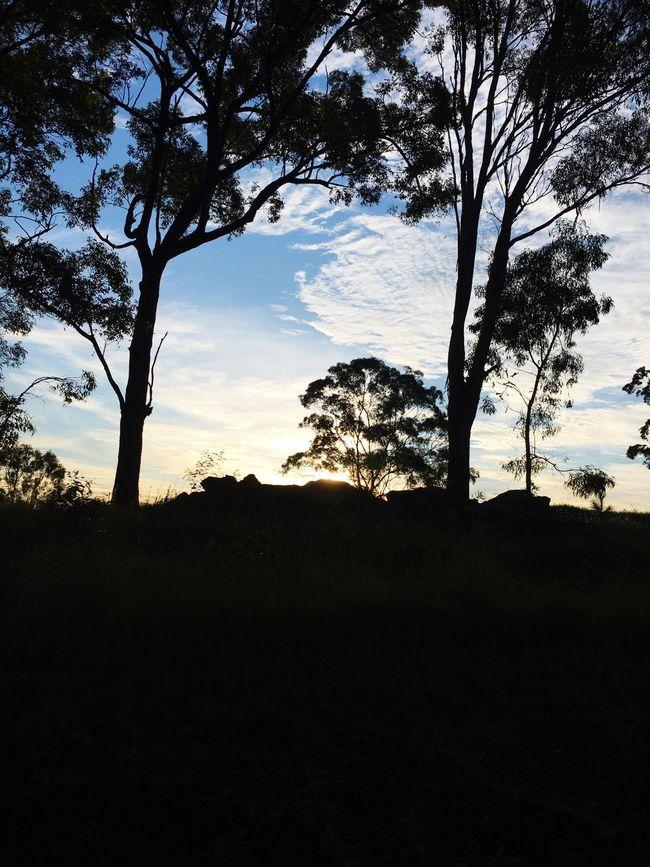 Nofilter Noedit Gold Coast Australia Beauty Nature Tranquility Peace Gold Coast Queensland Australia