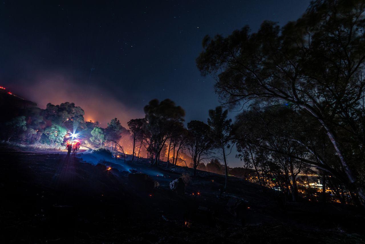 Fire Forest City Longexposure Beauty Stars