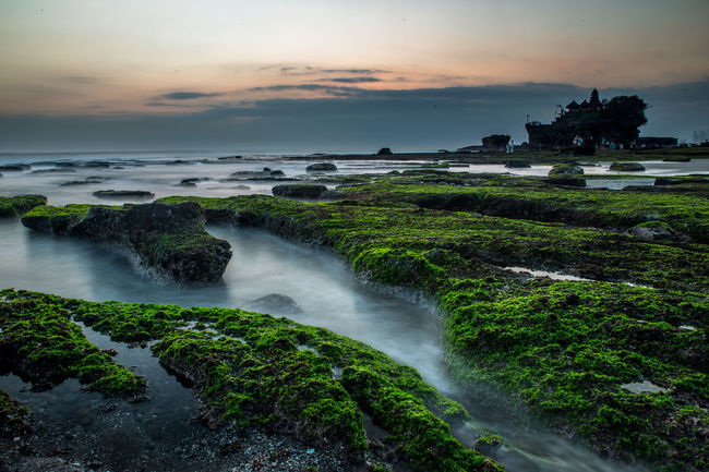 Bali Bali, Indonesia Beauty In Nature Idyllic INDONESIA Long Exposure Moss Nature Rock Rock - Object Scenics Sea Tanah Lot Tourism Tranquil Scene Tranquility Travel Destinations Water