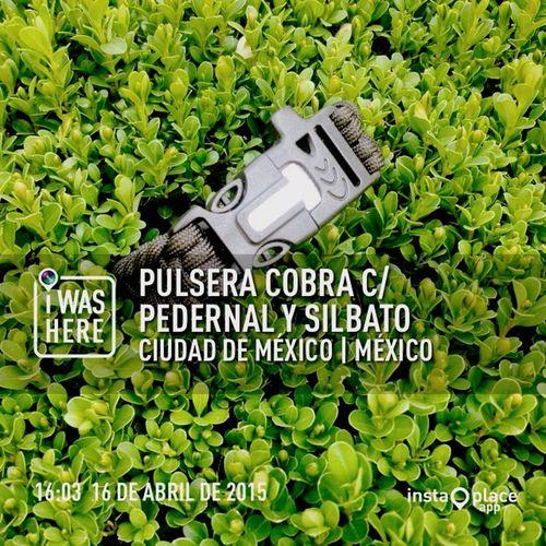 Militar Paracord550 Campismo Militares First Eyeem Photo Ciudad De México Antara Polanco Escuelaaviacionmexico Cancun ✌ Monterrey pedidos p550@pidosclick.com.mx