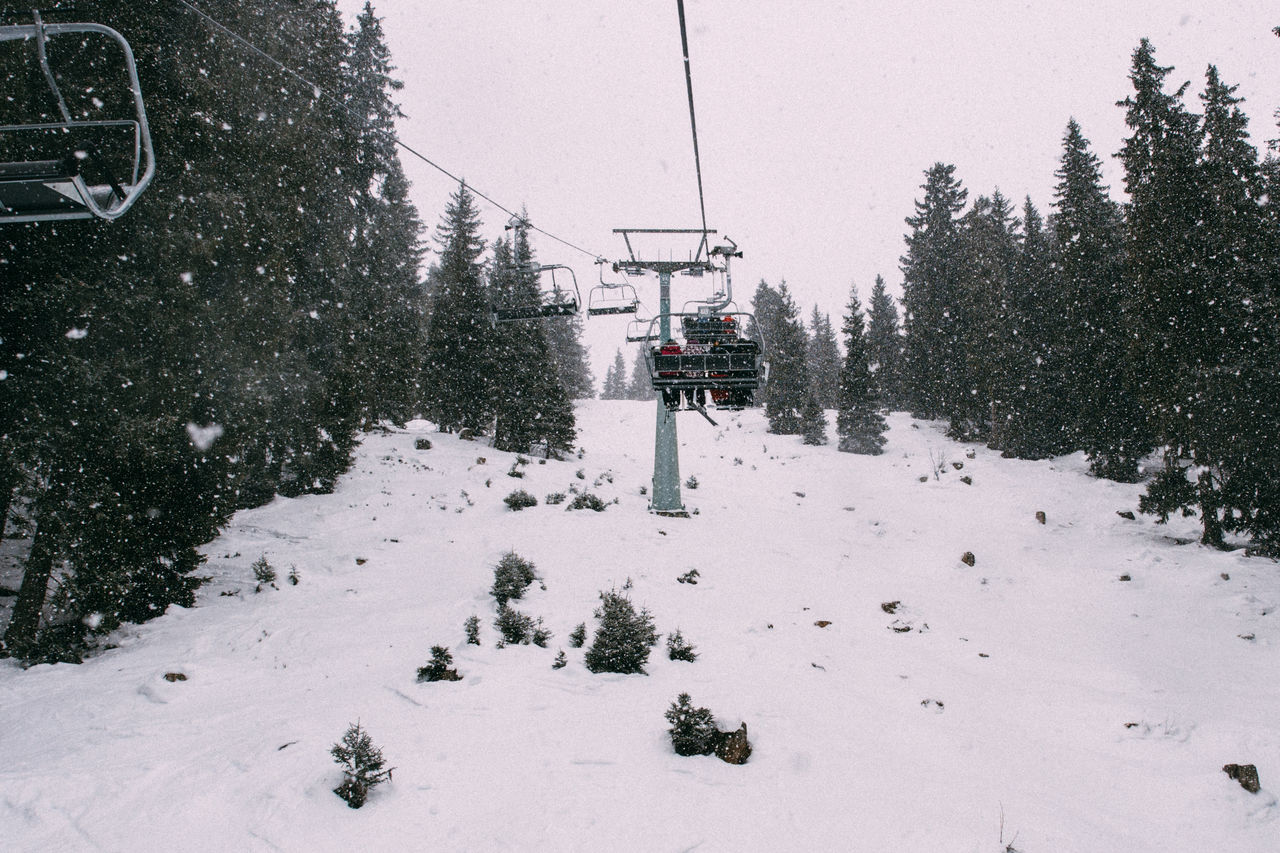 Cold Temperature Nature Outdoors Ski Lift Skiing Snow Transportation Tree Weather Winter