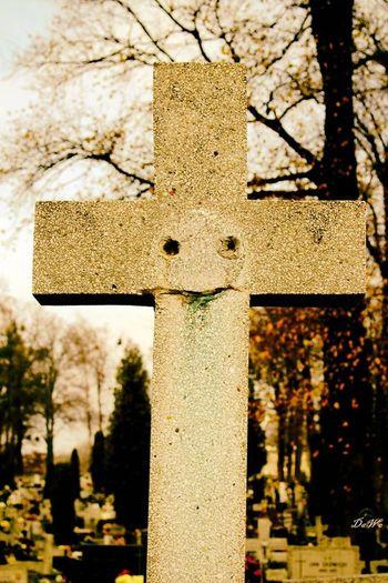 Cmentarz Cemetery Cemetary Cementery