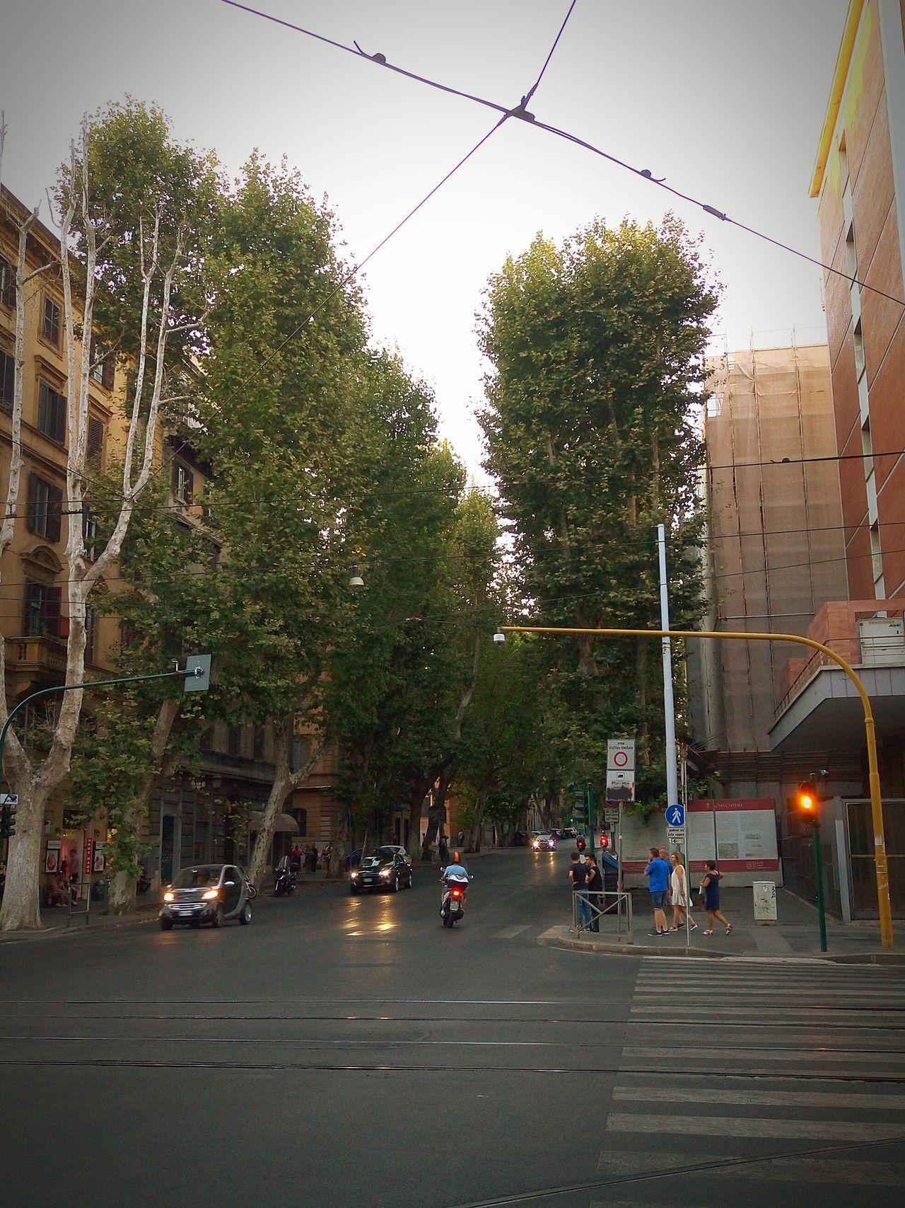 Street City City Life Sky Tree First Eyeem Photo Miles Away Miles Away
