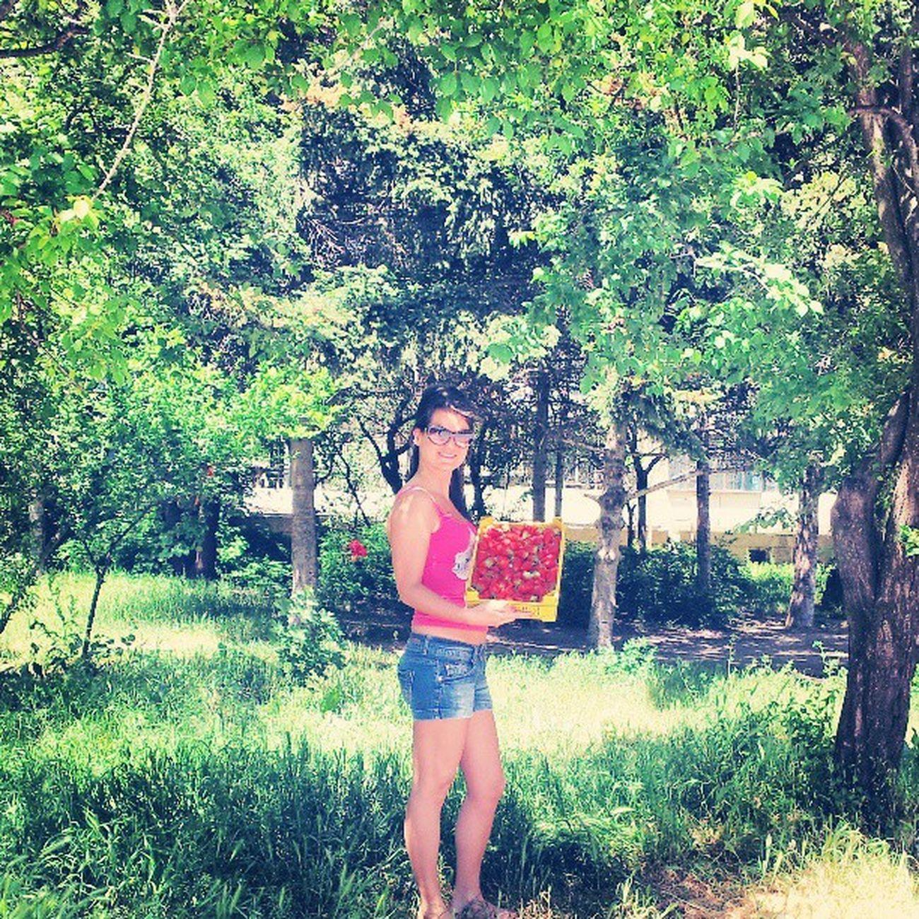 Straberry Tree Garden Instegramer instagramania instegramvarna android anıyaşa fabshots fashion followme shoutout turkishfollowers picofthethay photojournalism jj me