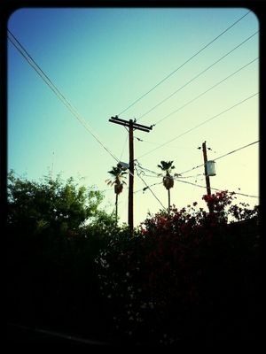 Power Lines in Tucson by Becky Soto
