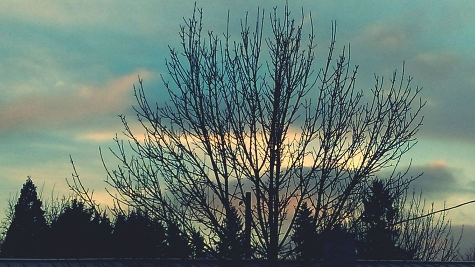 ✨🌸Pastel Power 🌸✨ Soft Pastel  Shades Of Nature Eyeem Clouds Shades Of Sky Eyeem Clouds And Sky Clouds And Sky Clouds And Sky Variation Eye4photography  Shades Of Blue Getty Images EyeEm Worthy Cloudscapes EyeEm Best Shots - Nature Shades Of Bluegreen