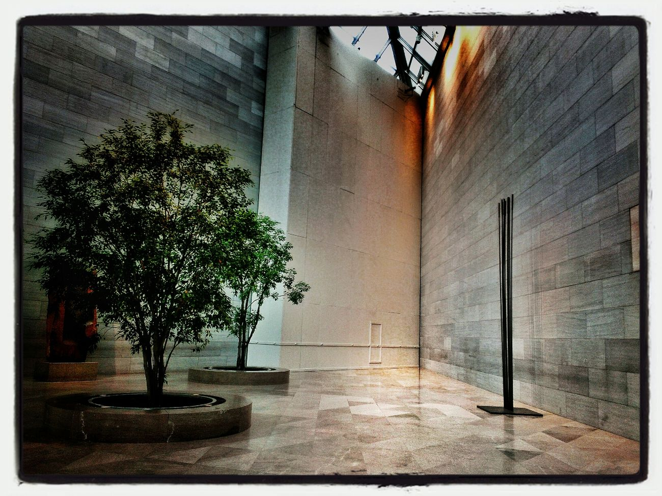 Corner with Tree Architectural Detail National Gallery Of Art Light And Shadow