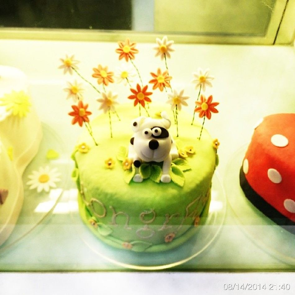 WallaceGromit 's cake