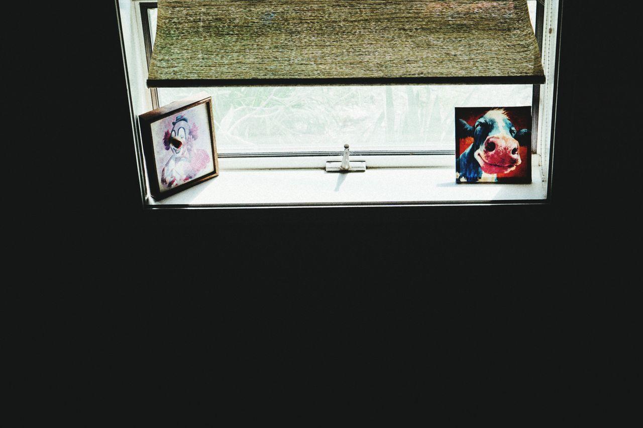 Windows Window Sill Window Light