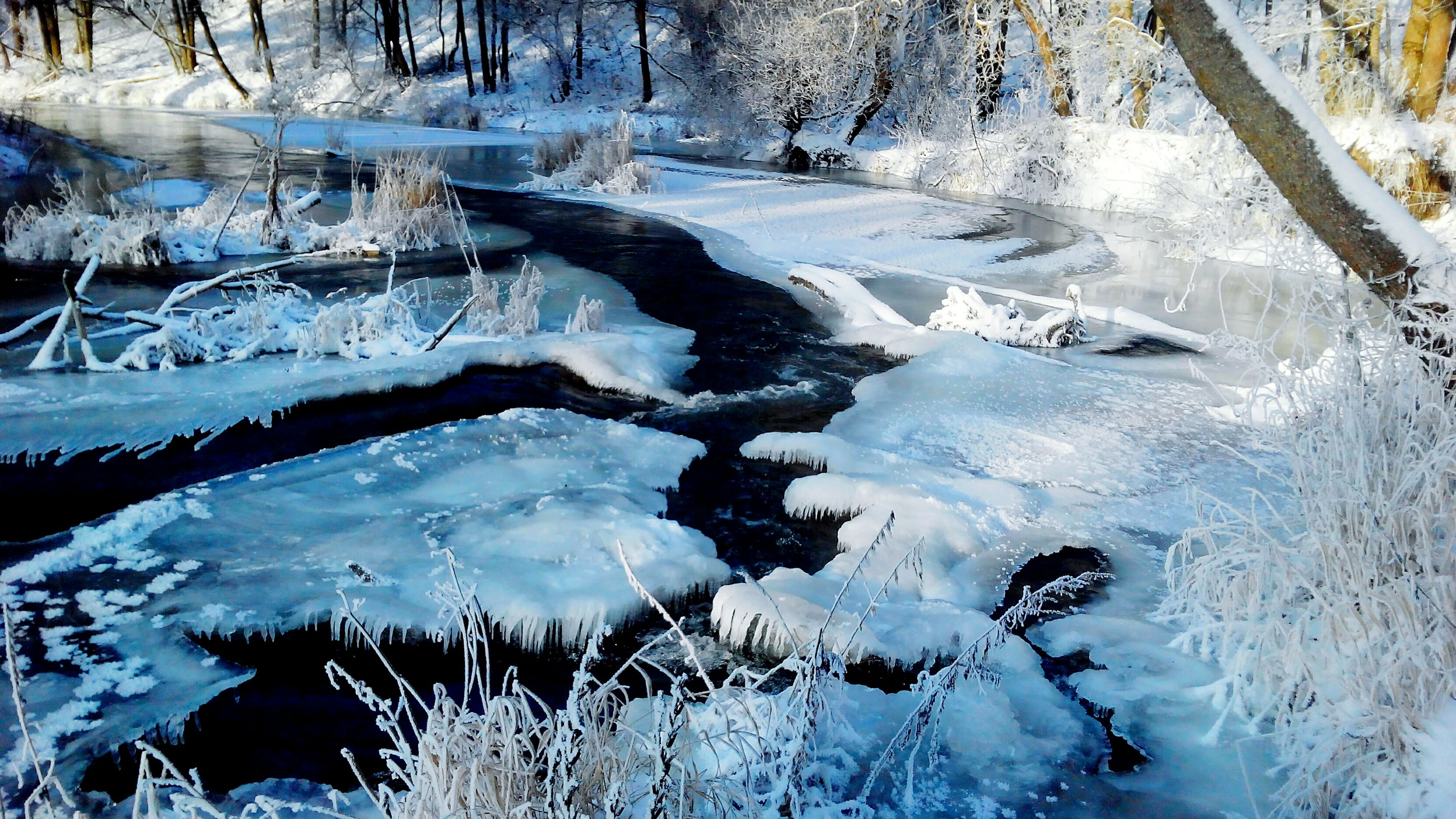 winter, snow, cold temperature, tranquility, frozen, tranquil scene, season, nature, beauty in nature, forest, water, ice, scenics, weather, tree, bare tree, lake, non-urban scene, covering, woodland