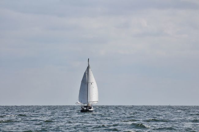 Aquatic Sport B Baltic Sea Day Horizon Over Water Horizontal Nature Nautical Vessel No People Ostsee Outdoors Regatta Sailboat Sailing Sailing Ship Sea Segeln Ship Sky Water Yacht Yachting