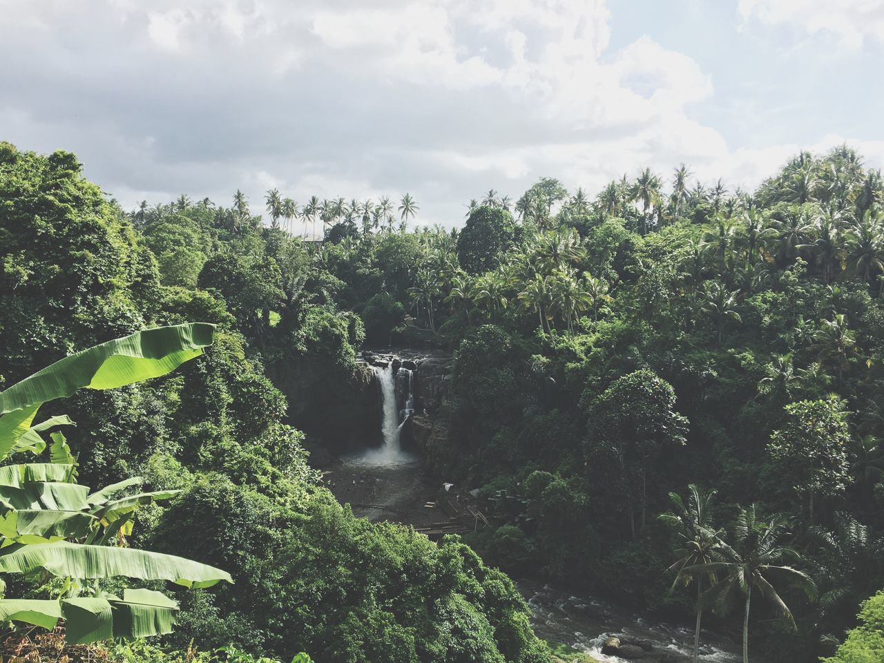 Bali Ubud Tegenungan Waterfall View Breathtaking Scenic Picturesque Paradise Picoftheday Green Water Swimming