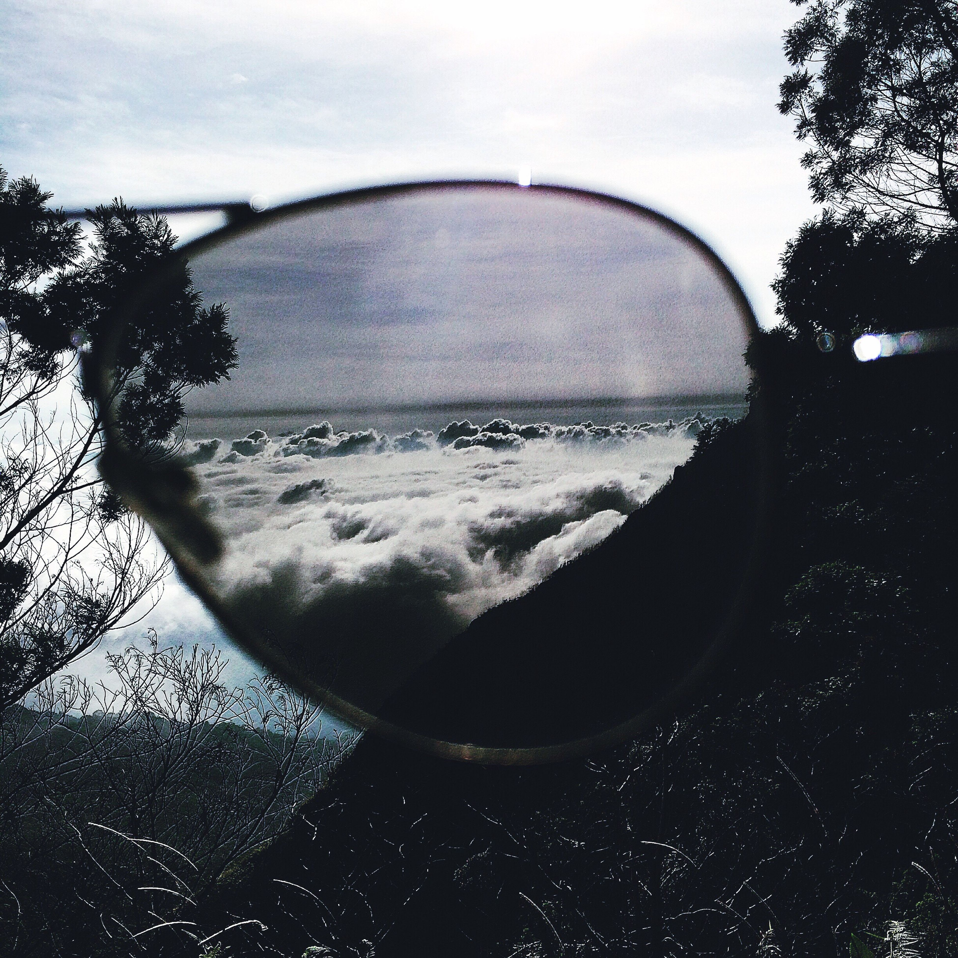 water, sky, reflection, scenics, circle, tree, beauty in nature, nature, tranquil scene, sea, tranquility, transparent, close-up, wet, cloud - sky, drop, side-view mirror, transportation, cloud, outdoors
