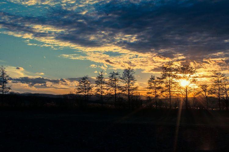 Icarus-imagination EyeEmbestshots Nature_collection Sunshine Landscape Inspiration Sunset_collection Natureporn Nature Gettyimages Nature On Your Doorstep Soaking Up The Sun Sunsetporn Sunset Silhouettes Sunsetlover Sunset_captures Sundown Sun Sun_collection