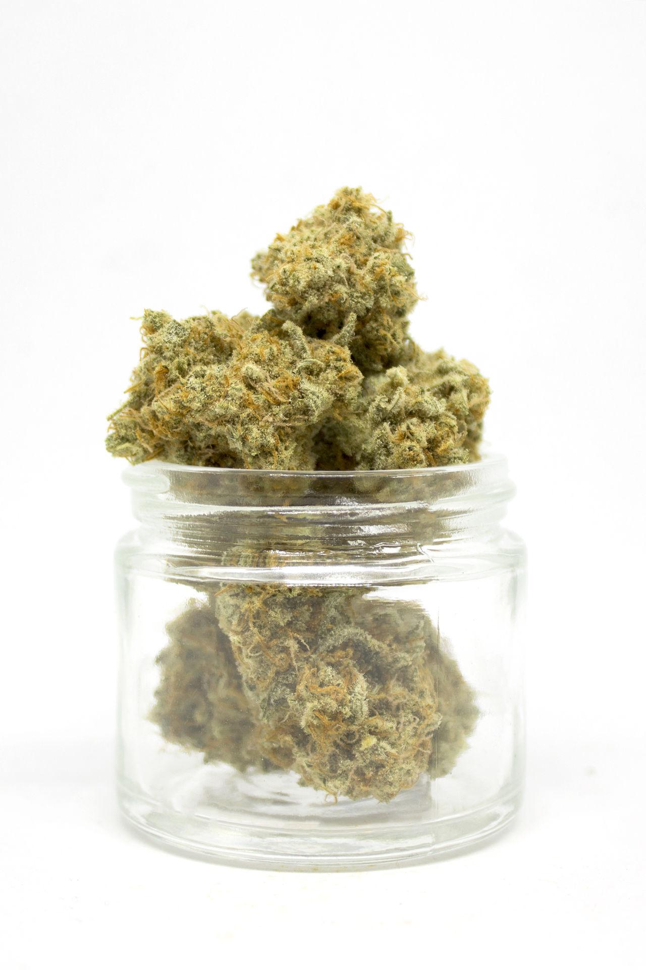 Alternative Medicine Cannabis Cannabis Plant Drugs Herb Herbal Herbal Medicine Jar Marijuana Marijuana - Herbal Cannabis Medical Medical Cannabis Medical Marijuana Weed Weed Life