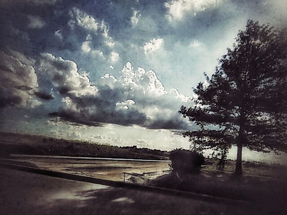 My Point Of View EyeEm Gallery Trees And Sky Taken While Traveling Landscapes New On Eyeem Tree Porn Nature Nature Photography Nature_collection Tadaa Community Showcase July Eyeem Collection Fine Art Eyeem Market EyeEm Nature Lover Popular Capture The Moment Eye4photography  EyeEm Summer Shots