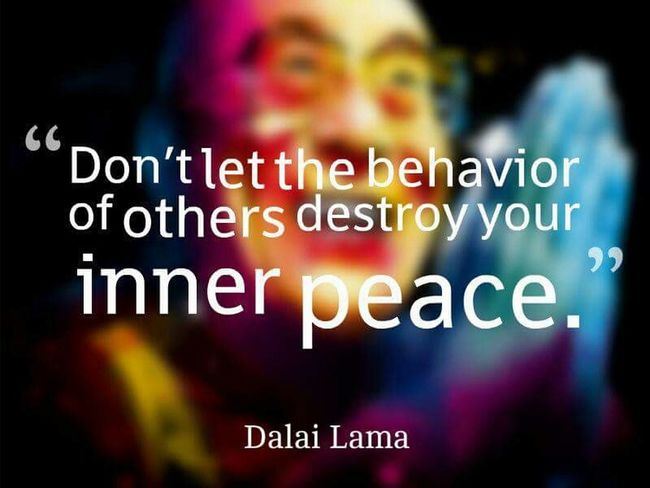 I'll never understand why people feel the need to put others down just to make themselves feel better.. What a sad life. Foolishpeople Human Behavior Dalailama Greatquotes Quoteoftheday Hurtful  Destroy LoveYourself Killl Em With Kindness ;) Innerpeace