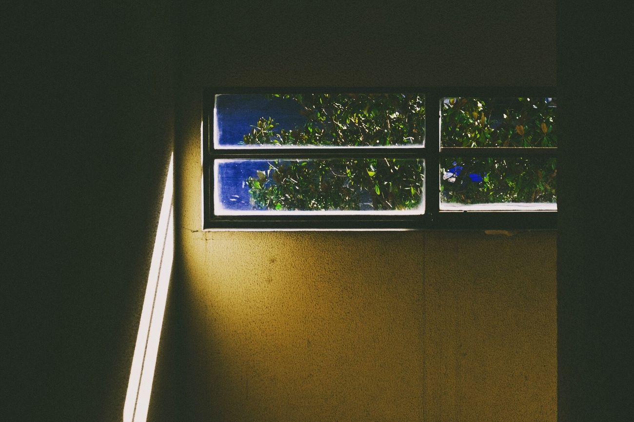[…]La fotografia si esplica sempre all'interno di un dualismo perfetto. Se uno ci pensa, nella fotografia c'è il negativo e il positivo. E' un rapporto tra la luce e il buio. E' un giusto equilibrio tra quello che c'è da vedere e quello che non deve essere visto. Quando noi fotografiamo, vediamo una parte del mondo e un'altra la cancelliamo. Luigi Ghirri Window Indoors  No People Nature Lights Poetry In Pictures Sunlight Quiet Places Fuji Fujifilm_xseries Light Poetry Transitional Moments Light And Magic EyeEm Photooftheday The Week On EyeEem Light And Space EyeEm Best Shots The Week Of Eyeem Light And Darkness