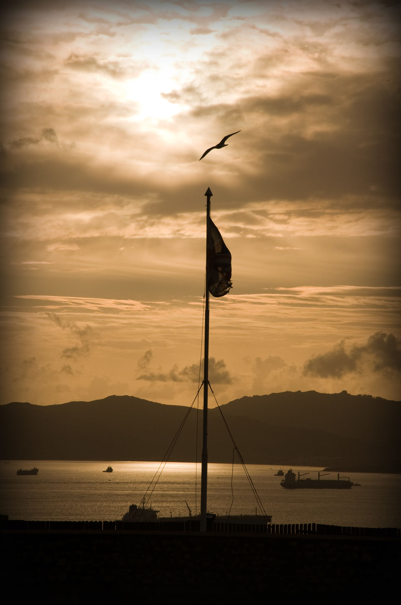 Animal Themes Beauty In Nature Bird Cloud - Sky Day Gibraltar Mast Moorish Moorish Castle Nature No People Outdoors Sailboat Scenics Sea Silhouette Sky Sunset Tranquil Scene Tranquility Water
