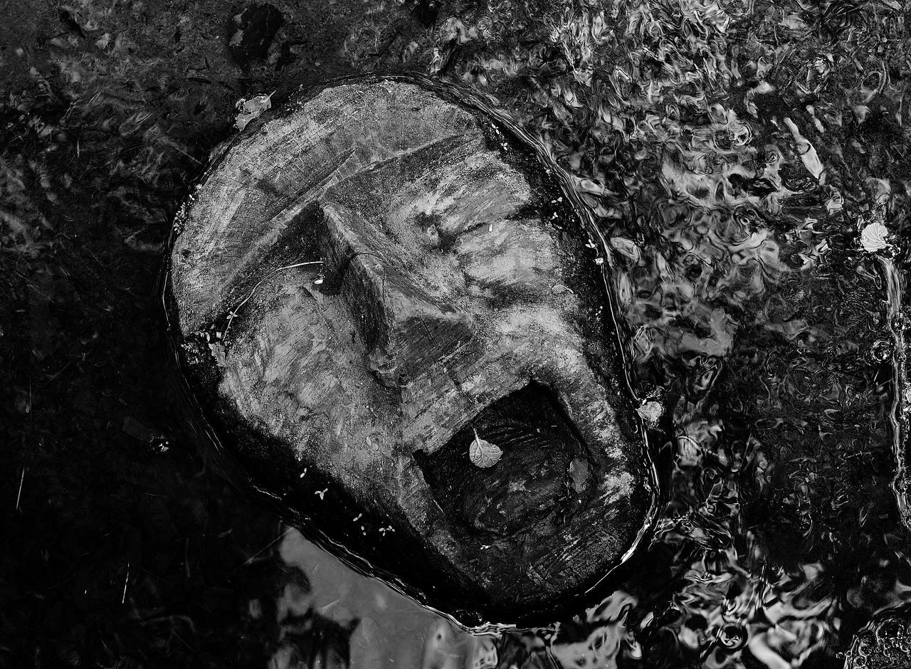 Bad Condition Black And White Blackandwhite Photography Close-up Destruction Directly Above Face Ghost Leaf Moody Nikon D3200 Scary Scary Face Scream Sculpter In Water Sculpture Spooky Textured  Trenthamgardens Water Wet Wood In Water Wooden